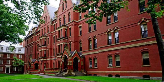 The Tree Academy - Harvard