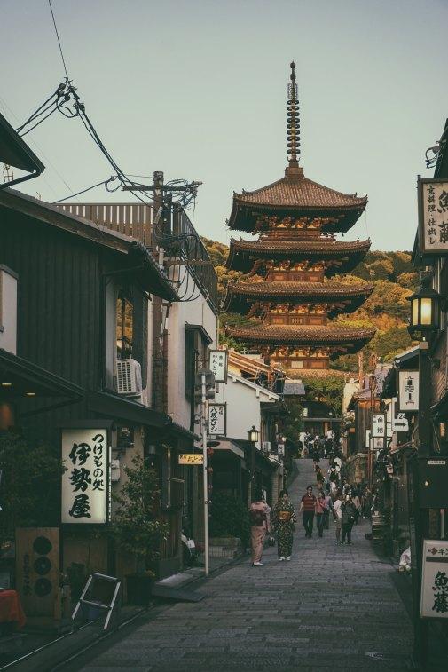 The Tree Academy - Kyoto