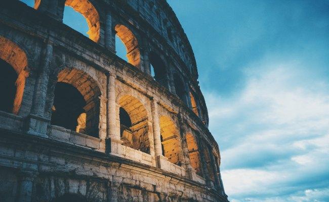 The Tree Academy - Rome