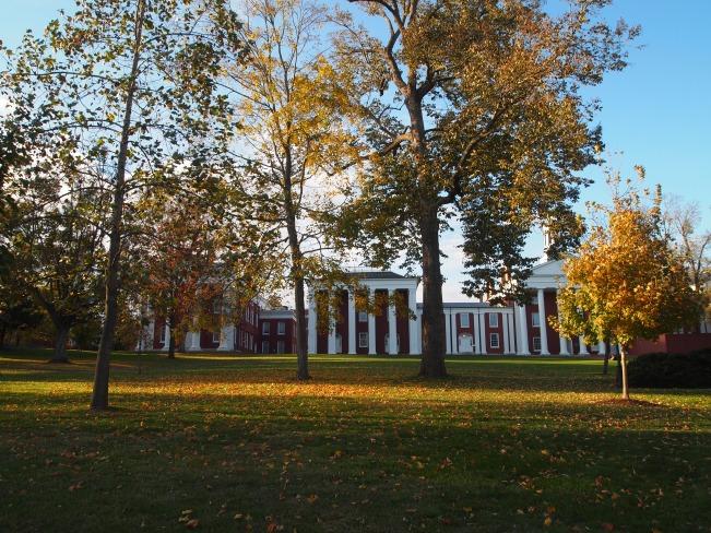 The Tree Academy - Washington & Lee University