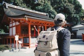 The Tree Academy - Du học Nhật Bản